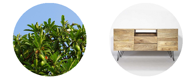 meuble-manguier