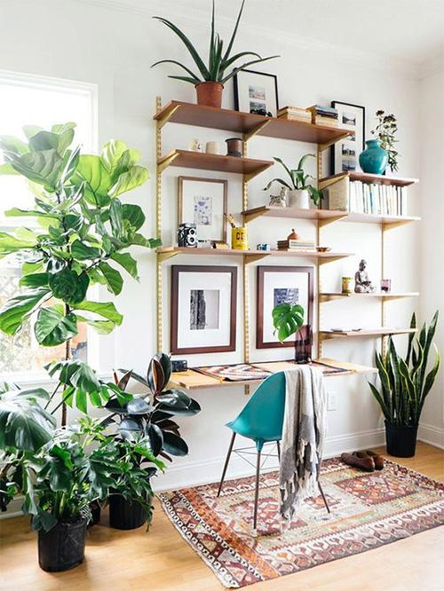 Id es d co pour un bureau feng shui made in meublesle - Plante pour le bureau ...